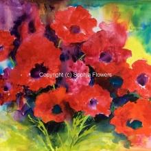 'Poppy Heaven'