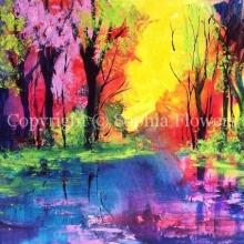 'Colour's Joy'