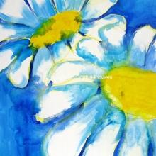 'Daisy May'
