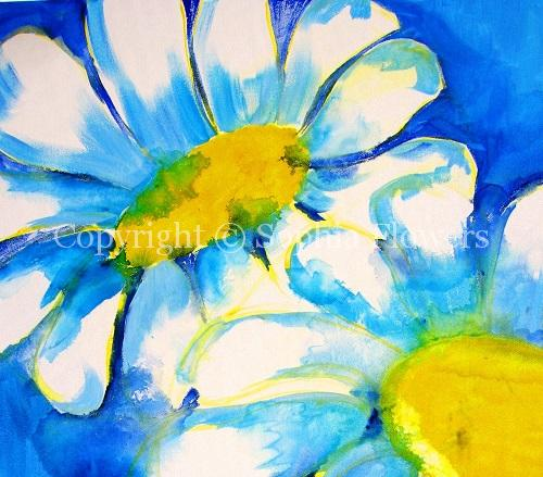 Daisy May 3 - Website 2015