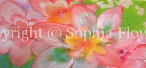 Sophia Flowers – Professional Artist & Certified Instructor